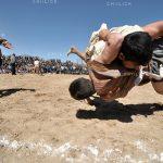 جشنواره سراسری شمیم بهار - اردلان حسنعلی زاده ، راه یافته به بخش آماتور | نگارخانه چیلیک | ChiilickGallery.com