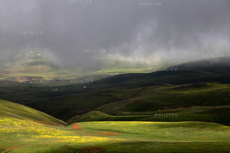 جشنواره سراسری شمیم بهار - رضا گلچین کوهی ، راه یافته به بخش حرفه ای | نگارخانه چیلیک | ChiilickGallery.com