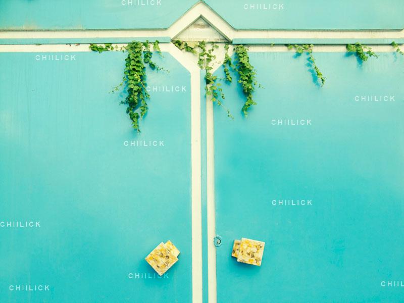 جشنواره سراسری شمیم بهار - شادی آفرین آرش ، راه یافته به بخش آماتور | نگارخانه چیلیک | ChiilickGallery.com