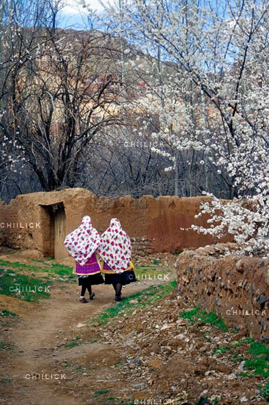جشنواره سراسری شمیم بهار - فاطمه (رامش) حسینی لاهیجی ، راه یافته به بخش حرفه ای | نگارخانه چیلیک | ChiilickGallery.com
