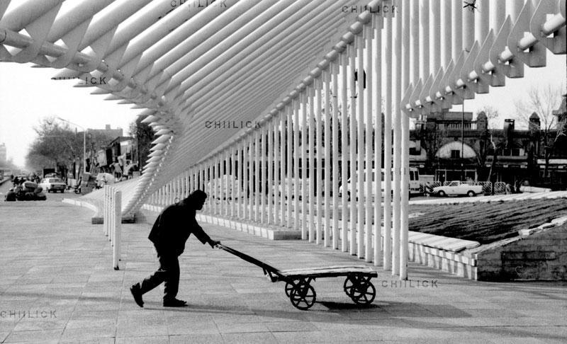 عکس طهران 86 - امین کفاش زاده | نگارخانه چیلیک | chiilickgallery.com