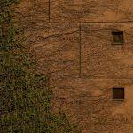 سومین جشنواره عکس فیروزه - پرگل عینالو | نگارخانه چیلیک | ChiilickGallery.com