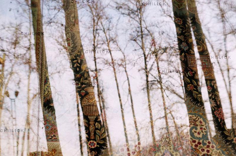 اولین دوره مسابقه عکس فرش دستباف - هیوا نقشی ، شایسته تقدیر | نگارخانه چیلیک | ChiilickGallery.com