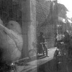 نمایشگاه سالانه عکاسان قزوین - امین جعفرپور | نگارخانه چیلیک | ChiilickGallery.com