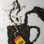 مسابقه عکس شرکت گلستان - مجتبی جلال پور | نگارخانه چیلیک | ChiilickGallery.com