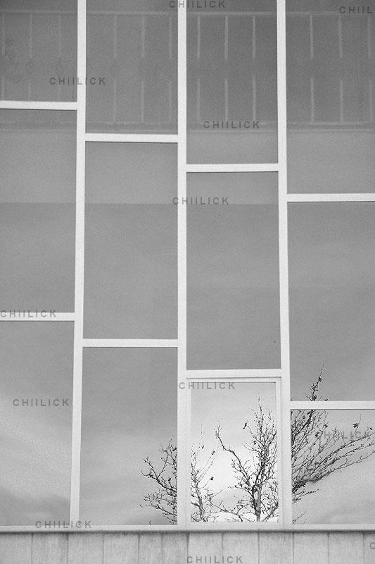 نمایشگاه سالانه عکاسان قزوین - آرش ملا حسنی | نگارخانه چیلیک | ChiilickGallery.com