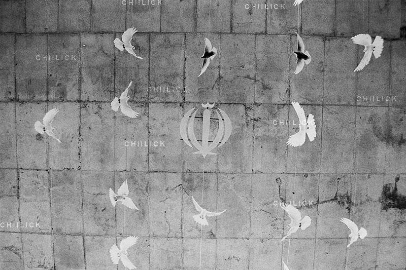 جشنواره استانی عکس پیرتاکستان - مریم فرساد   نگارخانه چیلیک   ChiilickGallery.com