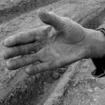 بخش جنبی جشنواره مطبوعات - شهروز شریفی نسب | نگارخانه چیلیک | chiilickgallery.com