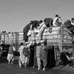 سومین جشنواره عکس زمان - محمود میربزرگ | نگارخانه چیلیک | ChiilickGallery.com