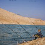 دومین جشنواره گرانتر از طلا - مازیار اسدی | نگارخانه چیلیک | ChiilickGallery.com