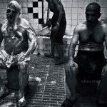 دومین جشنواره گرانتر از طلا - محمد ادیبی | نگارخانه چیلیک | ChiilickGallery.com