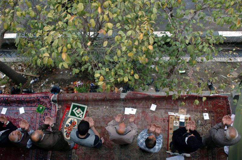 اولین دوره مسابقه عکس فرش دستباف - سید محسن سجادی | نگارخانه چیلیک | ChiilickGallery.com