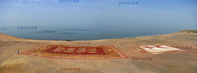 اولین دوره مسابقه عکس فرش دستباف - ناصح حسینی | نگارخانه چیلیک | ChiilickGallery.com