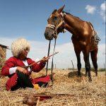 بخش جنبی جشنواره مطبوعات - سیوا شهباز | نگارخانه چیلیک | chiilickgallery.com