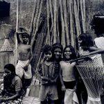 بهارات - حسن ملکی | نگارخانه چیلیک | ChiilickGallery.com