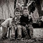 دومین جشنواره گلستانه - عباس حاجی محمدی ثانی آبادی ، راه یافته به بخش الف | نگارخانه چیلیک | ChiilickGallery.com