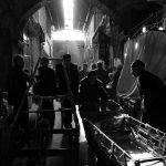 دومین جشنواره عکس فیروزه - آزاده نوزاد | نگارخانه چیلیک | ChiilickGallery.com