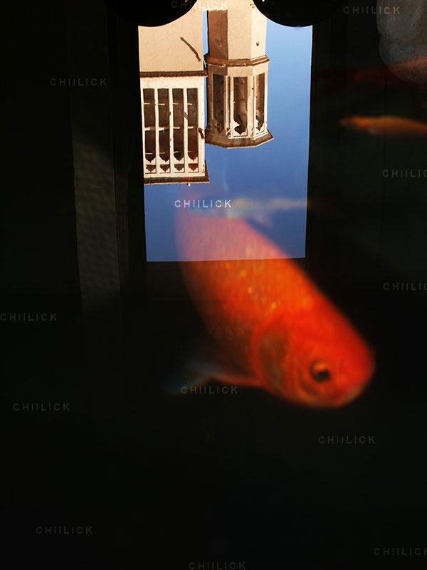 سومین سوگواره سراسری عکس نگاه سرخ - هادی یعقوبیان ، شایسته تقدیر در بخش معماری | نگارخانه چیلیک | ChiilickGallery.com