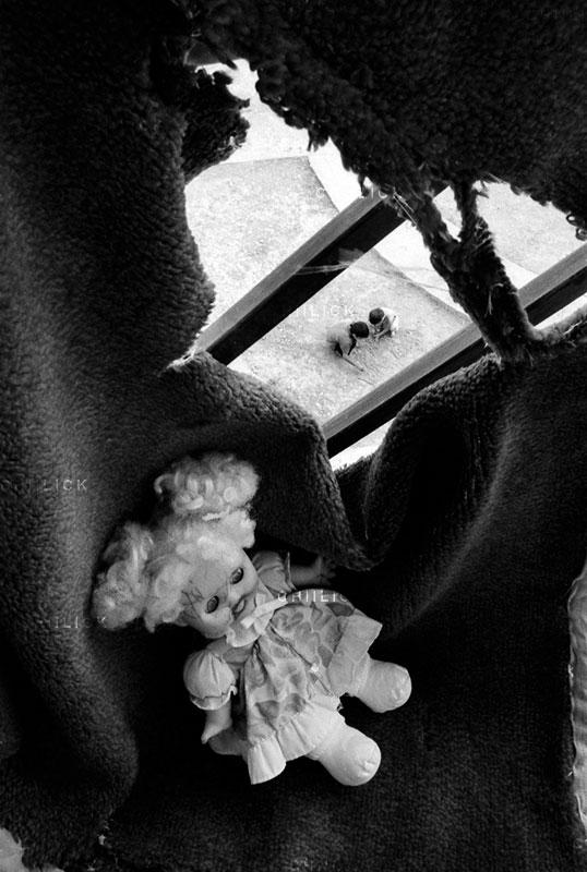 دومین جشنواره گلستانه - ابراهیم کوچکی ، راه یافته به بخش الف   نگارخانه چیلیک   ChiilickGallery.com