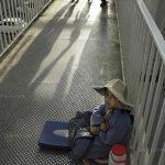 نخستين جشنواره عكس گلستانه - ابراهیم کوچکی | نگارخانه چیلیک | ChiilickGallery.com