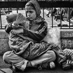 نخستين جشنواره عكس گلستانه - حامد ملکی | نگارخانه چیلیک | ChiilickGallery.com