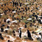 چهارمین جشنواره ایران شناسی - حسین تورانی | نگارخانه چیلیک | ChiilickGallery.com