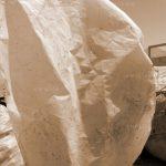 دومین جشنواره گلستانه - جواد بهمنش ، راه یافته به بخش الف | نگارخانه چیلیک | ChiilickGallery.com