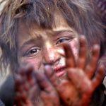 نخستين جشنواره عكس گلستانه - مجید فکری | نگارخانه چیلیک | ChiilickGallery.com