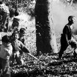 نخستين جشنواره عكس گلستانه - سیدمنصور معصومی سنگتراشانی ، شایسته تقدیر در بخش الف با موضوع: کودکان خیابانی و بیسرپرست | نگارخانه چیلیک | ChiilickGallery.com