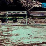 نخستين جشنواره عكس گلستانه - پروانه پاری | نگارخانه چیلیک | ChiilickGallery.com