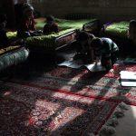 دومین جشنواره گلستانه - طاهره فیجانی ، راه یافته به بخش ب | نگارخانه چیلیک | ChiilickGallery.com