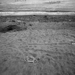 نمایشگاه سالانه عکاسان قزوین - مهدی وثوق نیا | نگارخانه چیلیک | ChiilickGallery.com