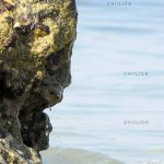 پلک زدن میان ماهی ها - زمان شجایی | نگارخانه چیلیک | ChiilickGallery.com