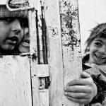 دومین جشنواره گلستانه - علی فتحی زهرایی ، راه یافته به بخش الف | نگارخانه چیلیک | ChiilickGallery.com