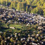 جشنواره محیط زیست مازندران - امیرحسین مددی | نگارخانه چیلیک | ChiilickGallery.com