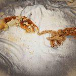 اولین نمایشگاه عکس نان - آزاده مظهر سرمدی | نگارخانه چیلیک | ChiilickGallery.com