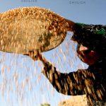 اولین نمایشگاه عکس نان - اسحاق آقایی | نگارخانه چیلیک | ChiilickGallery.com