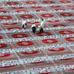 جشنواره شهر آسمان - فرامرز عامل بردبار ، راه یافته به بخش میهمان | نگارخانه چیلیک | ChiilickGallery.com
