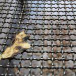 اولین نمایشگاه عکس نان - فرزانه باسمچی | نگارخانه چیلیک | ChiilickGallery.com