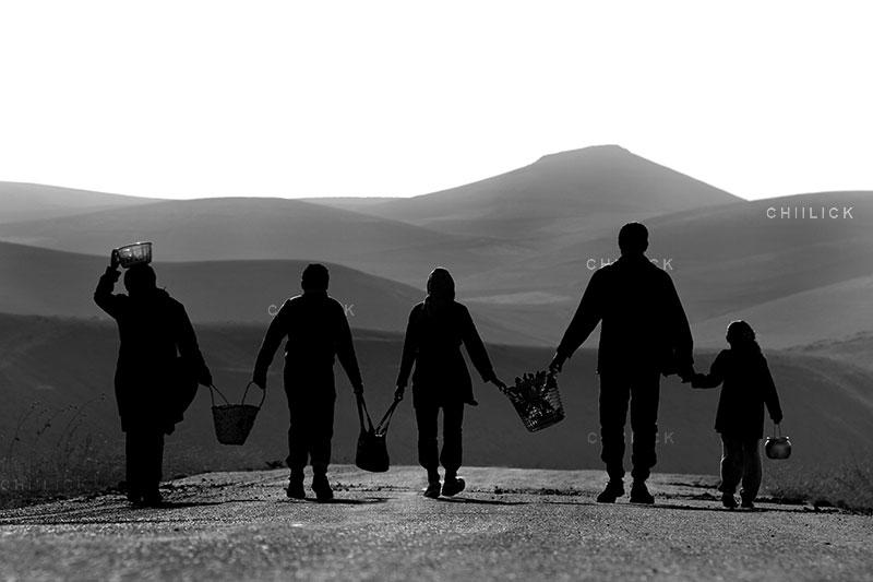 جشنواره ملی عکس تعاون - حمیدرضا بازرگانی ، راه یافته نمایشگاه در بخش حرفه ای | نگارخانه چیلیک | ChiilickGallery.com