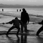 جشنواره ملی عکس تعاون - حسین نیک زاد آملی ، رتبه نخست بخش آماتور | نگارخانه چیلیک | ChiilickGallery.com