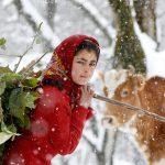 دومین جشنواره گلستانه - محمدعلی سالمی طولارود ، راه یافته به بخش الف | نگارخانه چیلیک | ChiilickGallery.com