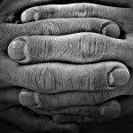 جشنواره ملی عکس تعاون - محمد صفرپور ، شایسته تقدیر در بخش آماتور | نگارخانه چیلیک | ChiilickGallery.com