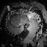 سومین سوگواره سراسری عکس نگاه سرخ - محسن کابلی | نگارخانه چیلیک | ChiilickGallery.com