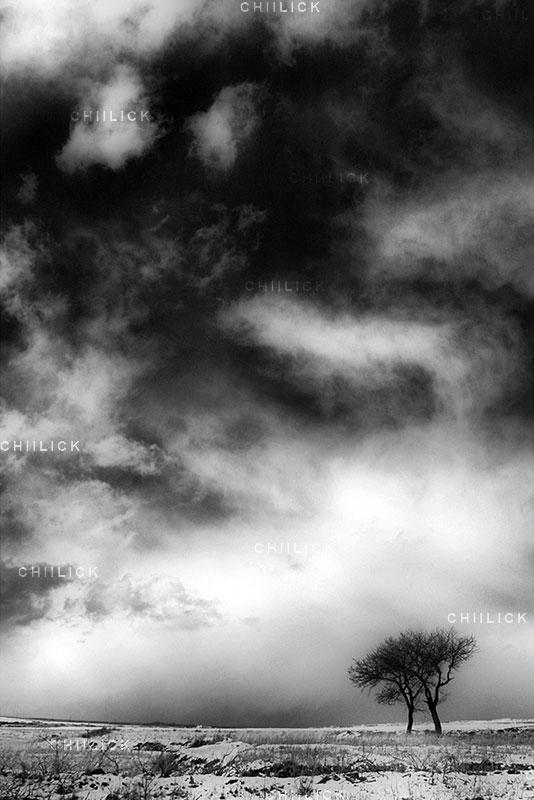 جشنواره عکس ایران شناسی - وریا خلجی ، راه یافته به بخش طبیعت | نگارخانه چیلیک | ChiilickGallery.com