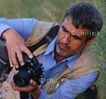 یوسف گرامی | پایگاه عکس چیلیک | www.chiilick.com