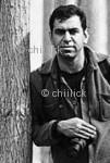 شهروز شریفی نسب | پایگاه عکس چیلیک | www.chiilick.com