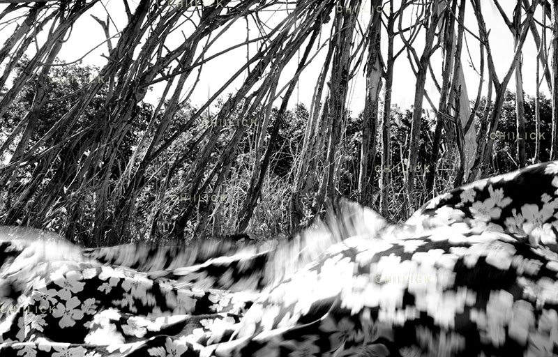 چهارمین جشنواره عکس زمان - فرزانه فرح بخش ، نگاه آزاد و خلاق به مفهوم زمان | نگارخانه چیلیک | ChiilickGallery.com