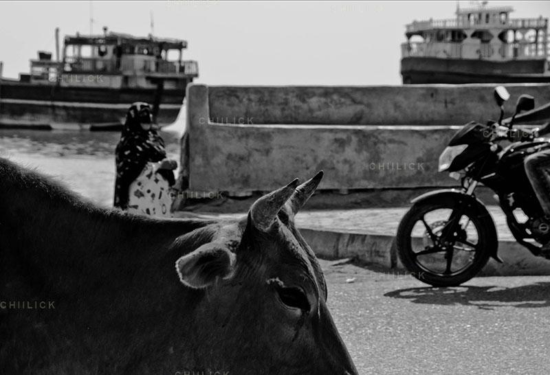 چهارمین جشنواره عکس زمان - حسین نیک مهر ، نگاه آزاد و خلاق به مفهوم زمان | نگارخانه چیلیک | ChiilickGallery.com