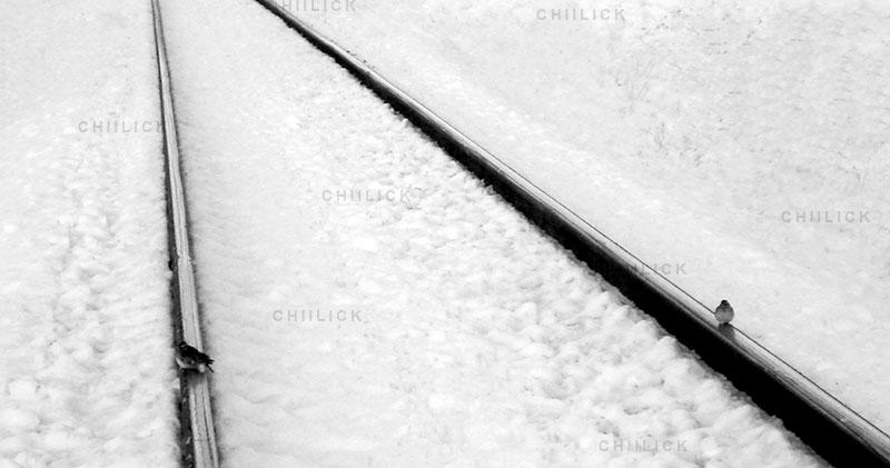 چهارمین جشنواره عکس زمان - عزت الله قربانی آهودشتی ، نگاه آزاد و خلاق به مفهوم زمان | نگارخانه چیلیک | ChiilickGallery.com